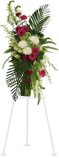 Picture of Gerberas and Palms Spray