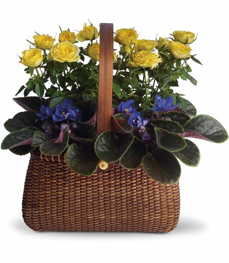 Picture of Garden To Go Basket
