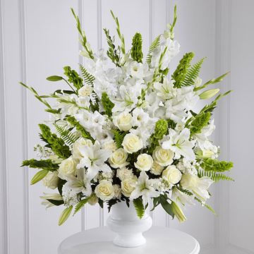 Picture of Morning Stars Arrangement